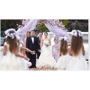 Свадьба в Молдове