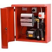 Топливораздаточная мини колонка для топлива в металлическом ящике ARMADILLO 60, 220В, 60 л/мин фото