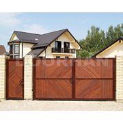 Распашные ворота DoorHan Premium фото