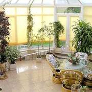 Сад зимний фото