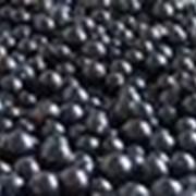 Ягода черной смородины фото