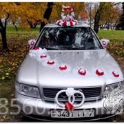Украшения на свадебные автомобили на прокат фото
