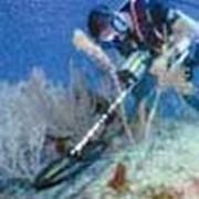 Подводные металлоискатели фото