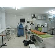 Пластические операции век и конъюктивальной полости в Кишиневе фото