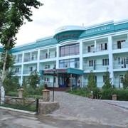 Сарыагаш санаторий Алтынай фото
