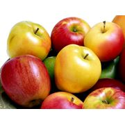 Яблоки экспорт из Молдовы фото