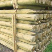 Деревянные Столбы для виноградников фото