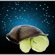 "Ночник - проектор ""Черепаха"" звездное небо фото"