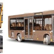 Автобусы МАЗ-206 фото