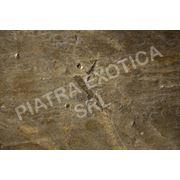 Каменный шпон. 1200мм х 600мм. ZEERA GREEN фото