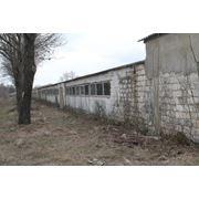 Ферма зоотехническая продажа фото