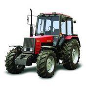Тракторы сельскохозяйственные БЕЛАРУС-1021 фото