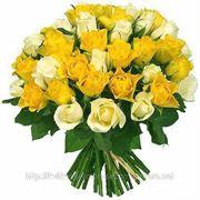 Купить цветы дешево Запорожье фото