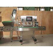 Оборудование для расфасовки и укупорки густых масс фото