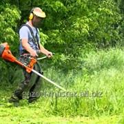 Услуга покоса травы фото