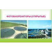 Фотобиореакторы открытые для выращивания Хлореллы фото
