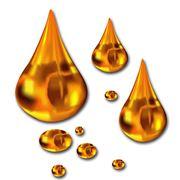 Utilaj pentru producerea uleiului din soia raps floarea soarelui фото