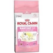 Корм Royal Canin Babycat для котят от 1 до 4 месяцев 34 0.4 кг. фото
