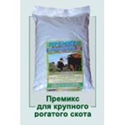 Премиксы для крупного рогатого скота ,adaosuri in alimentatie pentru animale фото
