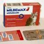 MILBEMAX для котят фото