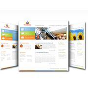 Разработка web-представительств (сайтов) фото