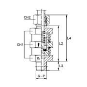 Обратный клапан Тип: 5006.. кольцо B3 фото