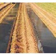 Пленка для мульчирования почвы