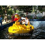 Аттракцион «Веселые лебеди» фото