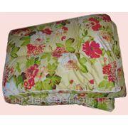 Одеяла, подушки холофайбер, синтепон, лебяжий пух, пух/перо, матрацы ватные . фото