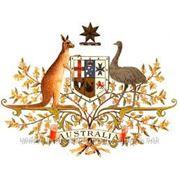 Иммиграция в Австралию. фото