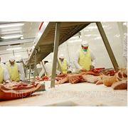 Трудоустройство в Польше на мясокомбинат фото
