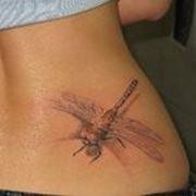 Студия тату, татуировки, татуажа, пирсинга в Соломенском районе фото