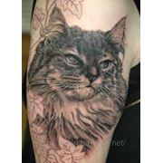 Татуировка с животными фото