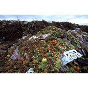 Утилизация пищевых отходов в Казахстане Утилизация пищевых отходов Утилизация отходов МВ Арна ТОО МВ Арна фото