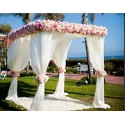 Оформление свадебного зала и призидиума молодых фото