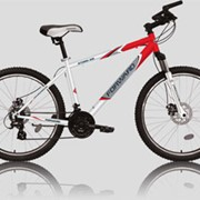 Велосипед Forward STORM 102 disk фото
