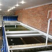 Установка индустриального выращивания рыбы фото