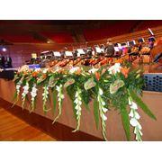 Разработка и организация оформления декора фитодизайн оформление зала украшение цветами фото