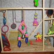 Игрушки для птиц фото