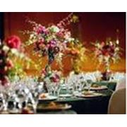 Оформление помещений живыми цветами Оформление интерьеров помещений - квартир и офисов банкетных залов свадеб свадебных лимузинов торжеств сцен. фото