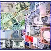 Валютный трейдинг фото