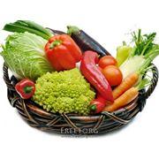Дистрибьюторские поставки овощей фото