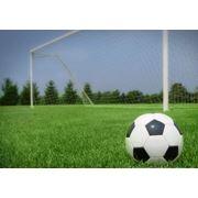 Уход подготовка обслуживание спортивных газонов фото
