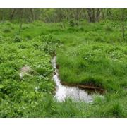Инженерные гидроэкологические изыскания Микробиологическое обследование грунтов и воды оценка санитарно-химического загрязнения воды и грунта фото
