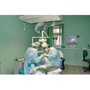 Эндодонтия фото