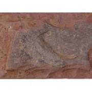 Известняковая плита 5-ти сторонней обработки Со сколом, галтованная фото