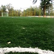 Аренда футбольных полей в Алматы фото