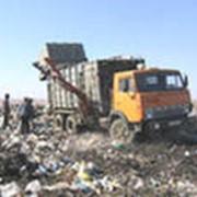 Бытовые отходы, сбор, вывоз и утилизация. фото