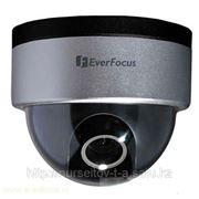 Купольная IP видеокамера фото