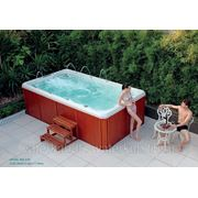 СПА-бассейн плавательный с гидромассажем Swim Spa WS- S38 Размер 3800х2120мм, глубина 1110мм фото